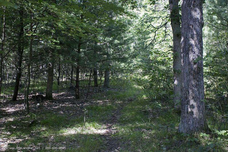 1762270 - Wisconsin Land for Sale in Adams County