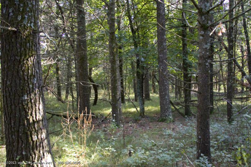1684135 Camping or Building site near Wisconsin Dells